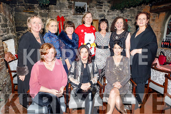 Enjoying their Christmas Party in Finnegans on Saturday.<br /> Seated l to r: Denise O'Connell, Ailish Brosnan and Sheila King.<br /> Back l to r: Mary Lawless, Delores  McElligott, Kathleen O'Mahoney, Fionnuala Hamilton, Angela O'Connor, Laura Collins and Mary Thompson.
