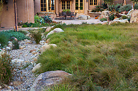 Carex lawn substitute meadow using mix of sedges - Carex pansa, C. praegracillis and C. divulsa; Schaff garden