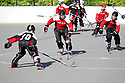 BI Roller Hockey (Action)