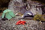 Camping In Glacier Bay