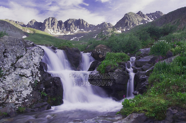 Mountain stream and wildflowers, Ouray, San Juan Mountains, Rocky Mountains, Colorado, USA, July 2007