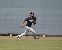 Yorvis Torrealba - 2019 AIL Rockies (Bill Mitchell)