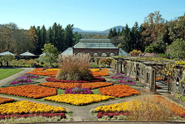 Biltmore Estate Conservatory in Fall