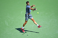 Grigor Dimitrov (Bul)<br /> Flushing Meadows 30/08/2017<br /> Tennis US Open 2017 <br /> Foto Couvercelle/Panoramic/Insidefoto