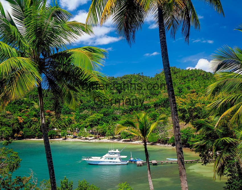 Dominikanische Republik, Halbinsel Samana, bei Samana: Bucht und Motoryacht  | Dominican Republic, Samana peninsula, near Samana: bay and motor yacht