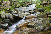 Small cascade on Pollard Brook in Lincoln, New Hampshire during the summer months.