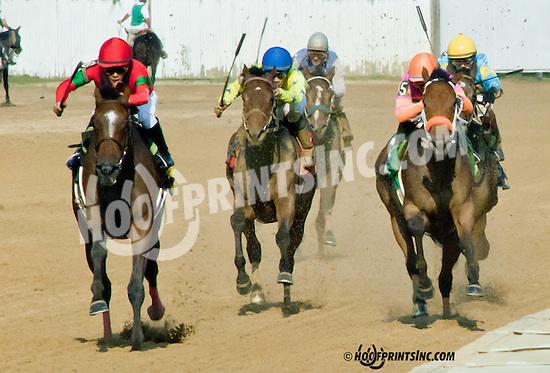 Diva Spirit (daughter of Wild Spirit) winning The Pollys Jet Stakes at Delaware Park on 10/5/13