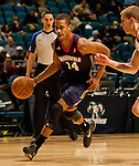 2013 D League Showcase- Steph Dennis