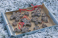 Vogelfutter, Vogel-Fettfutter, Fettfutter mit Sonnenblumenkernen und anderen Zutaten in weihnachtlichen Ausstechformen, weihnachtlich