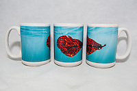 15 oz. Mug - Underwater Leaf - $25 + $6 shipping.<br />