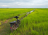 A Farmers old bike that still runs and I can testify on that in the rice-fields on the road between Siem Reap and Battambang the agriculture region of Cambodia