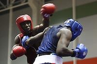 Boxeo 2013 Continental Elite