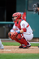 Harrisburg Senators catcher Taylor Gushue (36) waits to receive a pitch in front of home plate umpire Sean Shafer-Markle during the first game of a doubleheader against the New Hampshire Fisher Cats on May 13, 2018 at FNB Field in Harrisburg, Pennsylvania.  New Hampshire defeated Harrisburg 6-1.  (Mike Janes/Four Seam Images)