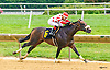 Hazel Eyed Girl winning at Delaware Park on 8/8/16