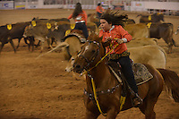 BARRETOS, SP, 18.08.2013 - FESTA DO PEAO DE BARRETOS - Prova Team Penning Infantil, Arena durante  58ª Festa do Peão de Boiadeiro de Barretos na cidade de Barretos neste sábado, 18.<br /> (Foto: Guilherme Soares / Brazil Photo Press).