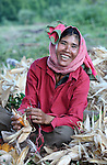 A woman shucks corn in the Cambodian village of Pheakdei.