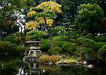 Little Japanese Zen garden with a lantern and a pond in Osaka Castle Park, beautiful tranquil autumn scenery. Osaka, Japan 2017