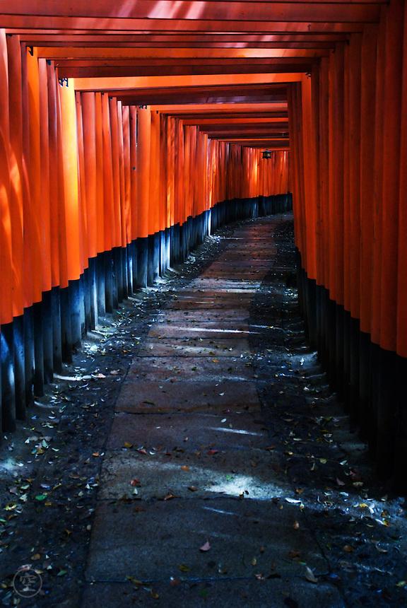 The red torii gates at Fushimi Inari Shrine, Kyoto, Japan