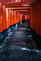 The red torii gates at Fushimi Inari Shrine, Kyoto, Japan