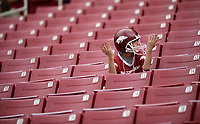 NWA Democrat-Gazette/ANDY SHUPE<br /> An Arkansas fan watches from the stands Saturday, April 6, 2019, during the Razorbacks' spring game in Razorback Stadium in Fayetteville. Visit nwadg.com/photos to see more photographs from the game.