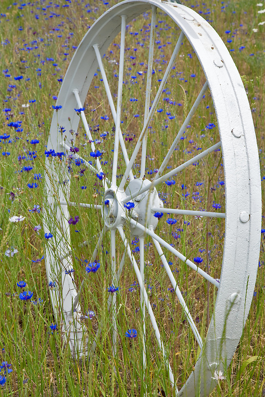 Decorative wheel in fence line. The Palouse, Washington