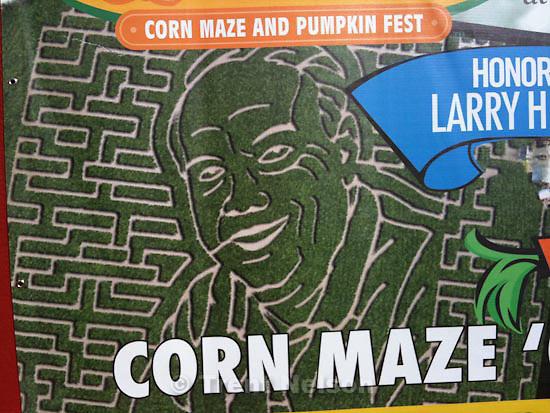 . Thursday, October 29 2009.larry miller corn maze at cornbelly's