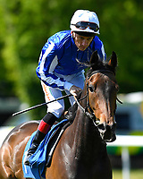 Fayrouz Rose ridden by Shane Kelly goes down to the start of The Smith & Williamson British EBF Fillies' Handicap (Class 3)   during Afternoon Racing at Salisbury Racecourse on 17th May 2018