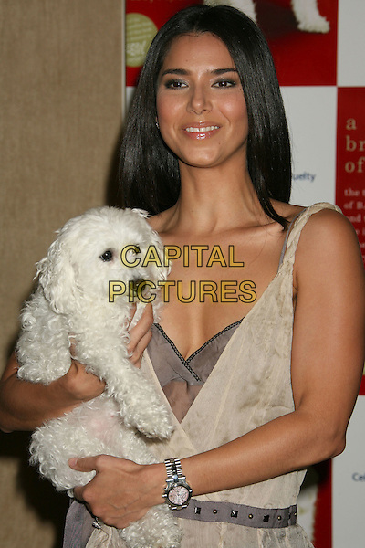 "ROSELYN SANCHEZ.""A Rare Breed of Love"" Release Party held at the Beverly Hills Hotel, Beverly Hills, California, USA, .29 May 2008..half length holding dog pet.CAP/ADM/MJ.©Michael Jade/Admedia/Capital Pictures"