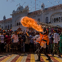 ANANDPUR SAHIB, INDIA - March 06, 2015: An Indian Sikh devotee performs fire-breathing during a religious procession to mark Hola Mohalla at the Guru Dwara Sri Kesgarh Sahib temple at Sri Anandpur Sahib, during Hola Mohalla celebrations on March 06, 2015 in Anandpur Sahib, India. Hola Mahalla or simply Hola is a Sikh event, which takes place on the first of the lunar month of Chet, which usually falls in March, and sometimes coincides with the Sikh New Year. It was started by Guru Gobind Singh the tenth Sikh guru in 1701 AD. Hola Mohalla is a three day Sikh festival, in which Nihang Sikh 'warriors' perform Gatka (mock encounters with real weapons), tent pegging and bareback horse-riding, which usually falls in March coinciding with or following the Hindu festival of Holi. <br /> Daniel Berehulak for The New York Times
