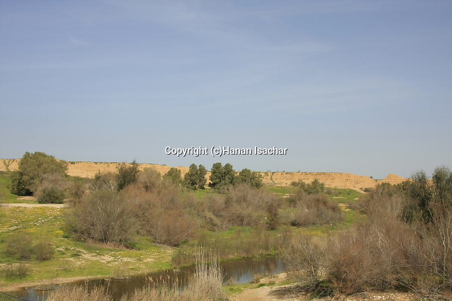 Israel, Besor region in the northern Negev. Besor stream