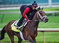 Palace Malice, trained by Todd Pletcher, works out in preparation for the Kentucky Derby at Churchill Downs on April 29, 2013.