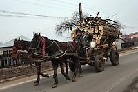 RUMAENIEN, 02.2013, Frumusani. Doerfler unterwegs mit Pferdegespann und Brennholz. | Villagers with horsecart and firewood. © Bogdan Croitoru/EST&OST.