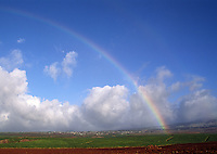 RAINBOW over SUGAR CANE FIELDS - MAUI, HAWAII