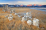 Tufa towers made from calcium-carbonate line the grassy shoreline at Mono Lake Tufa State Natural Reserve in California, USA