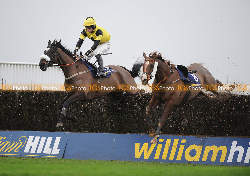 Manger Hanagment ridden by Mr M Ennis takes the last fence in the William Hill iPad App Now Available Handicap Chase Cl3  - Horse Racing at Kempton Park Racecourse - 12/01/2013 - MANDATORY CREDIT: Martin Dalton/TGSPHOTO - Self billing applies where appropriate - 0845 094 6026 - contact@tgsphoto.co.uk - NO UNPAID USE.