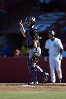 Holy Cross Crusaders catcher Riley Livingston (23) lets his defense know there is one out during the game against the South Carolina Gamecocks at Founders Park on February 15, 2020 in Columbia, South Carolina. The Gamecocks defeated the Crusaders 9-4.  (Brian Westerholt/Four Seam Images)