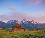 Grand Teton National Park, WY: Summer morning light on the John Moulton barn at Mormon Row - Antelope Flats
