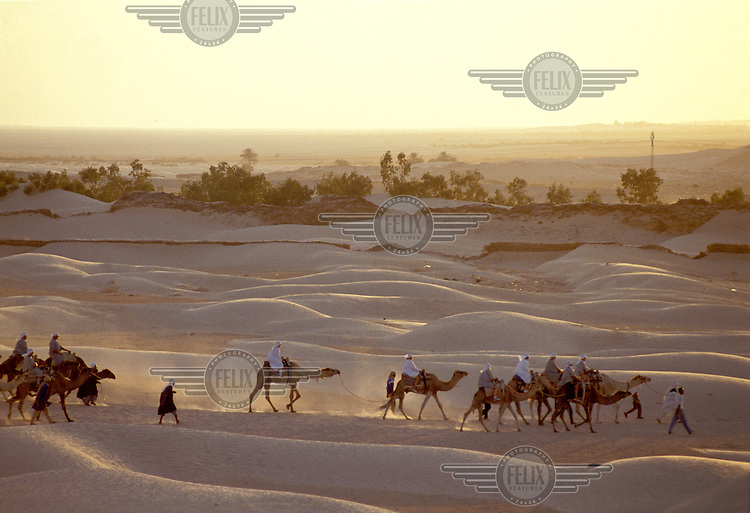 ©Guy Mansfield / Panos Pictures..Tunisia..Nomadic Bedouins travelling in a camel caravan in the Sahara desert.