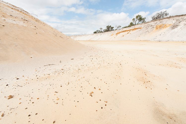 Rocla silica sand extraction and Banksia habitat restoration