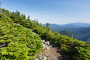 View from Signal Ridge Trail in the White Mountains of New Hampshire USA during the summer months.