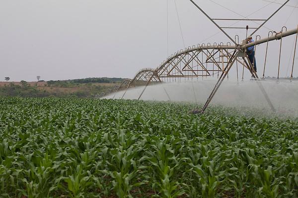 Inhauma_MG, Brasil...Fazenda Sao Joao em Inhauma, Minas Gerais. Na foto irrigacao mecanizada da plantacao de milho....Sao Joao farm in Inhauma, Minas Gerais. In this photo mechanic irrigation of corn...Foto: JOAO MARCOS ROSA / NITRO