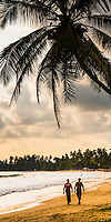 Mirissa, panoramic photo of tourists walking along Mirissa Beach at sunset, South Coast of Sri Lanka, Southern Province, Asia. This is a panoramic photo of tourists walking along Mirissa Beach at sunset, Sri Lanka, Asia. Mirissa Beach, a palm tree lined beach on the South Coast of Sri Lanka is one of the most popular beaches to visit for tourists and is home to many a beautiful sunset.