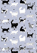 Kate, GIFT WRAPS, GESCHENKPAPIER, PAPEL DE REGALO, paintings+++++Black and white cats,GBKM39,#gp#, EVERYDAY ,cat,cats