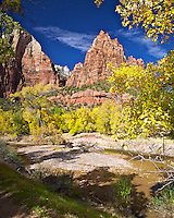 The Patriarchs, Virgin River, fall colors, yellow cottonwood, autumn, Zion National Park