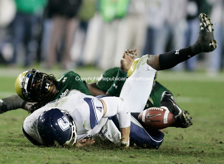 TAMPA, FL- 23 November 2008--112308BF12--UConn quarterback Tyler Lorenzen, 4, fumbles after being hit by South Florida's Jerome Murphy,3, during the fourth quarter Sunday night at Raymond James Stadium in Tampa, FL.  Bob Falcetti Republican-American