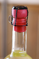 Bottle of Cruzdiabolo, semi-sweet sparkling wine, red plastic cork with wire muzzle Bodega Del Anelo Winery, also called Finca Roja, Anelo Region, Neuquen, Patagonia, Argentina, South America