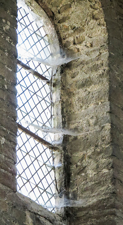 VMI Vincentian Heritage Tour: Cobwebs in the bell tower of the Saint-Philibert de Tournus church, a former Benedictine abbey. Members of the VMI toured the site  Wednesday, June 29, 2016, as they visited the town of Tournus in southern France. (DePaul University/Jamie Moncrief)