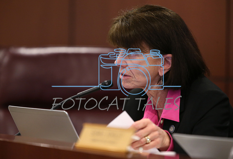Nevada Assemblywoman Robin Titus, R-Wellington, works in committee at the Legislative Building in Carson City, Nev., on Tuesday, March 3, 2015. <br /> Photo by Cathleen Allison