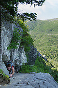 Hiker ascending a trail ladder along the Six Husbands Trail in the Great Gulf Wilderness in Thompson and Meserve's Purchase, New Hampshire during the summer months; part of the Presidential Range in the White Mountains.