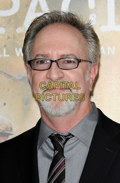 "GARY GOETZMAN.The Los Angeles premiere of HBO's new miniseries event ""The Pacific"" at Grauman's Chinese Theatre in Hollywood, California.  .February 24th, 2010.headshot portrait grey gray glasses black goatee facial hair  .CAP/ROT.©Lee Roth/Capital Pictures"